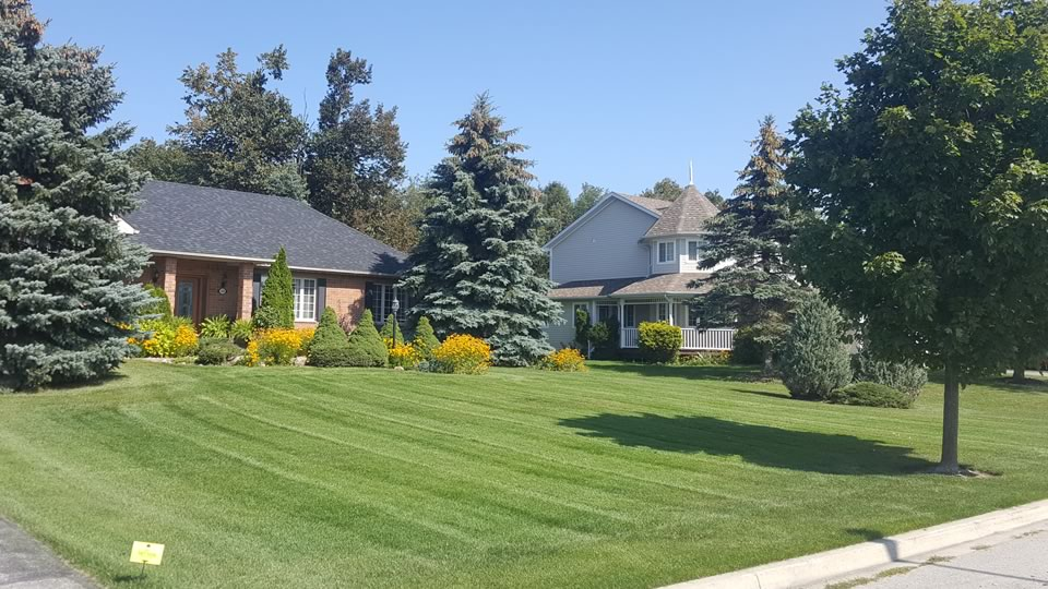 Lawn care & Lawn mowing in Midhurst Ontario